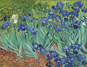 Irises. Vincent van Gogh. Digital image courtesy of the Getty's Open Content Program